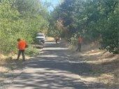 Park Trail Maintenance Picture